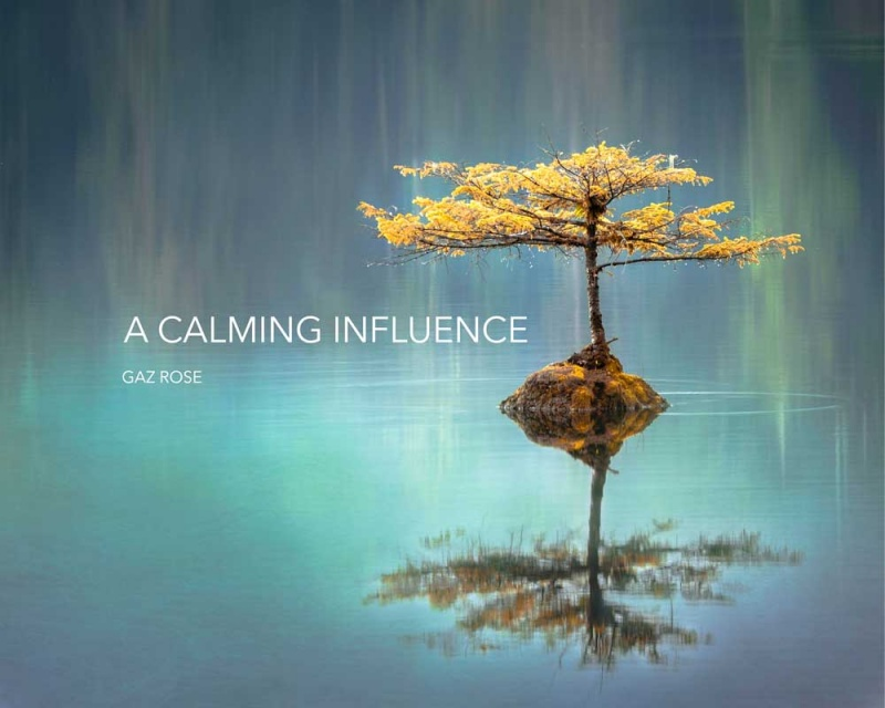 A Calming Influence - Download