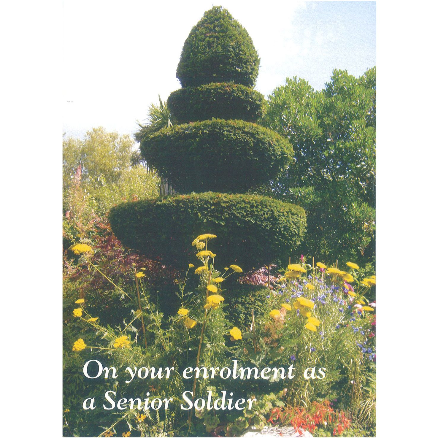 Senior Soldier Card - Topiary