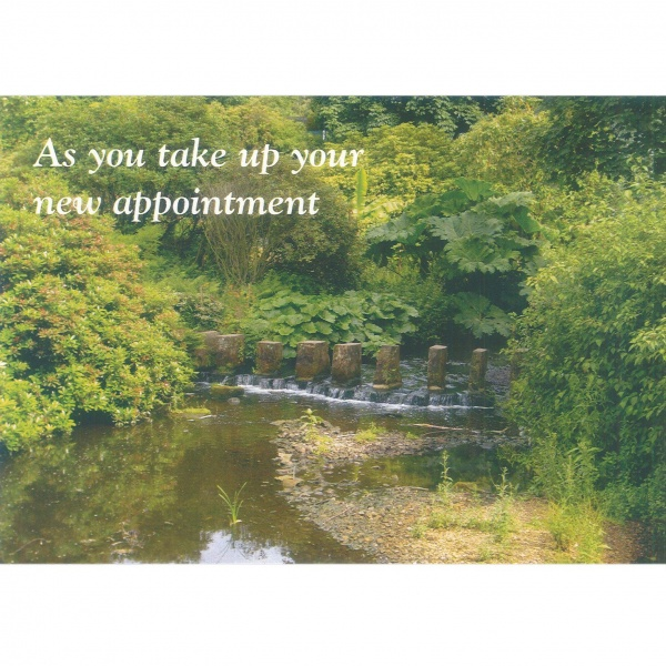 New Appointment Card - Waterfall